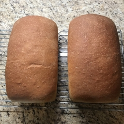 Weekly Honey Wheat Bread